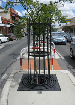 Murry St Gawler Tree Grille