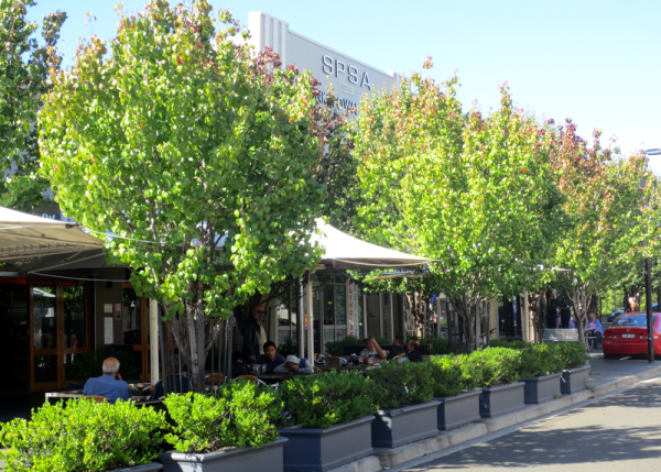 citygreen retail landscaping the new experience