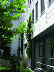 Green wall system 100 Series