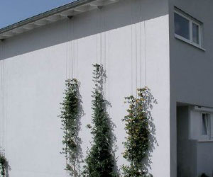 green wall systems 120 series