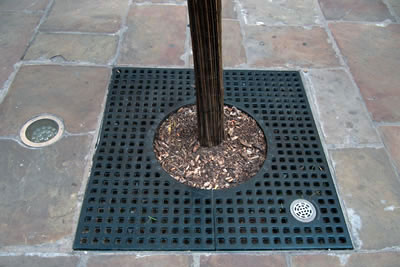 Cast Iron Tree Grates Avon