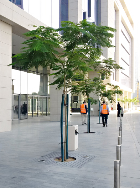 stratavault beneath trees in dubai