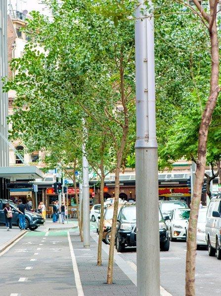 Kent Street Cycle Way