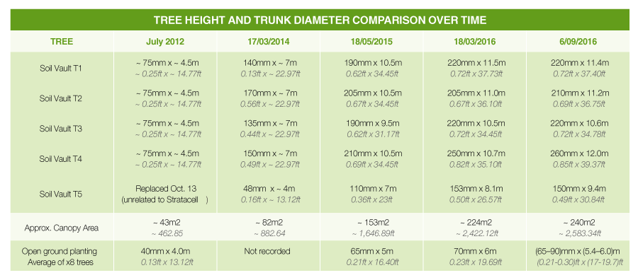 tree height and trunk diameter comparison